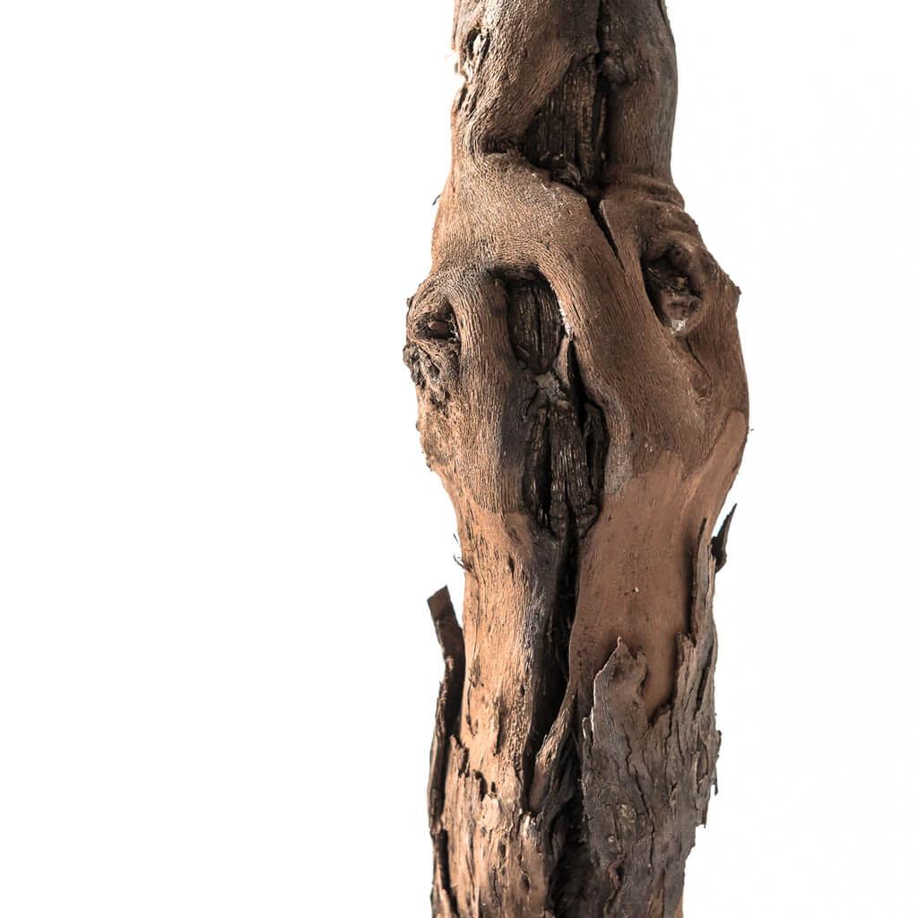 <p>La lampada Vigna esalta l'immaginazione di chi la guarda grazie al potere delle sue linee e al gioco di luci ed ombre. Si tratta di un prodotto capace di aggiungere emozione alla vita di tutti i giorni. Il suo profilo palpitante mette in evidenza i naturali nodi del legno diventando materializzazione della forza del legno.</p>